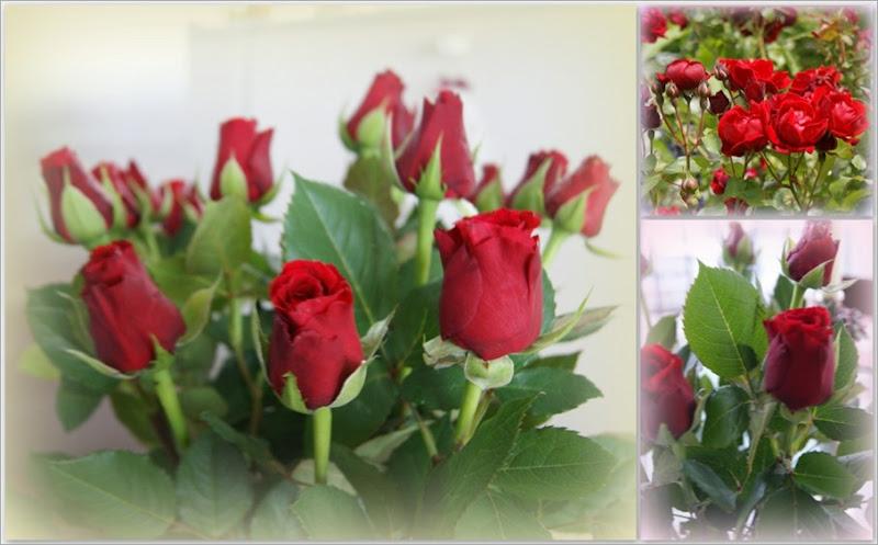 4-laatste decoraties en rozen2