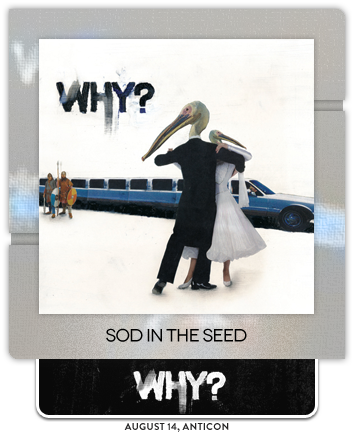 Sod in the Seed by WHY?