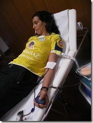 3Colheita de sangue CDES Gil Eanes - Vera Lopes