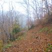 Trail Autogestiti - Malandreening a Migliana