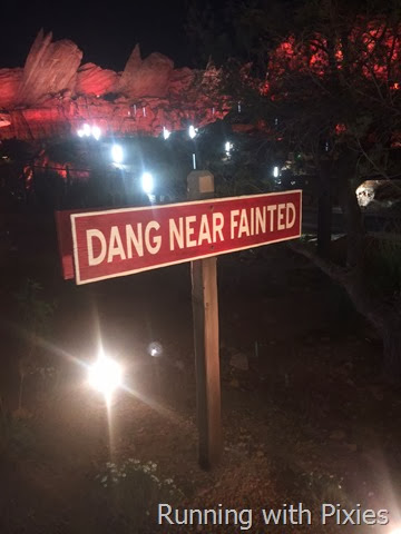 Fainted Sign