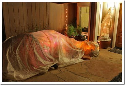 120116_frost_blankets_night5