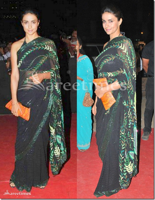 Gul_Panag_Black_Saree