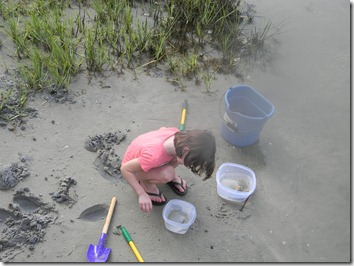 Lawson digging for crabs