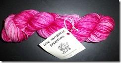 SG - Bugga - Pink Katydid