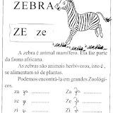 zebra_gif.jpg