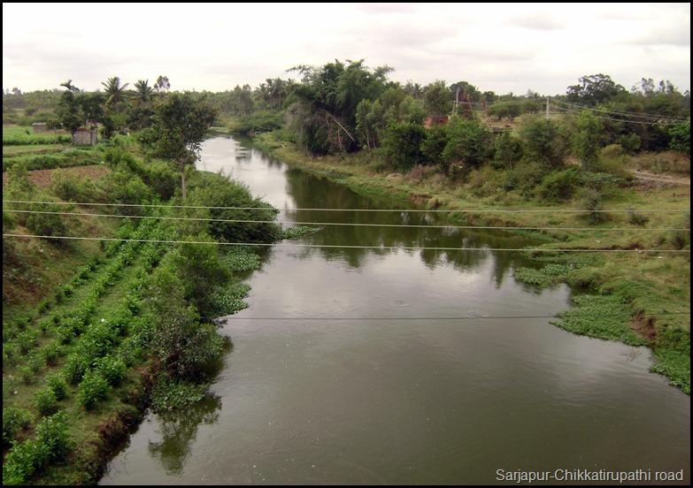 Sarjapur-Chikkatirupathi road