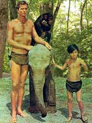 Tarzan16