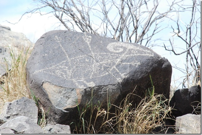04-12-13 A Three Rivers Petroglyph Site 042