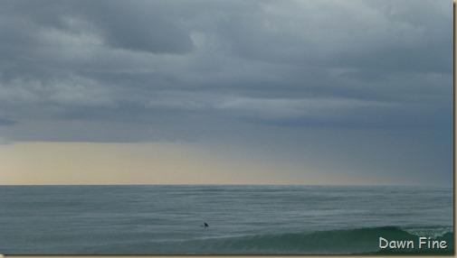 North beach  _158