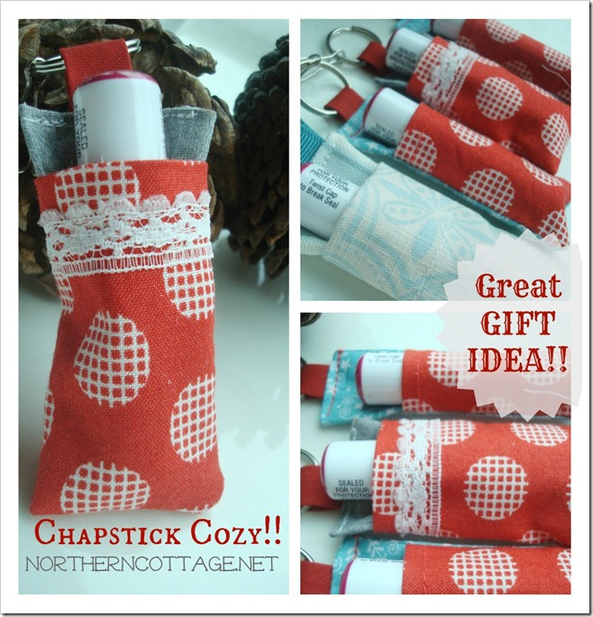 chapstick cozy gift idea