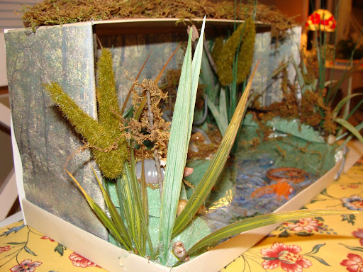 Pictures of Wetland Diorama http://picasaweb.google.com/lh/photo/TM2_Ex6vWykoIo8C_Du_tg