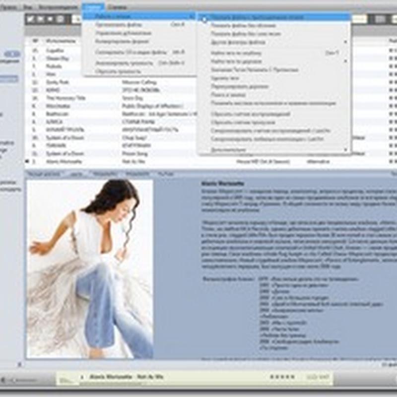 MusicBee – легкий и бесплатный многофункциональный музыкальный плейер