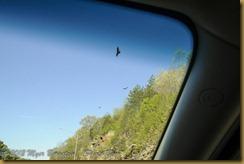_ROT5306 April 28, 2012  28.0-75.0 mm f-2.8