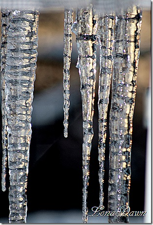 Icicles_Feb15