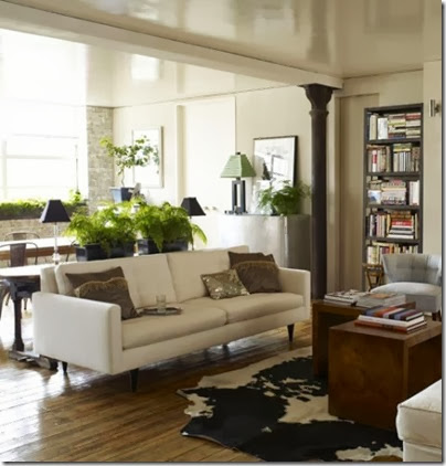 neutral-furniture-living-room-with-plant