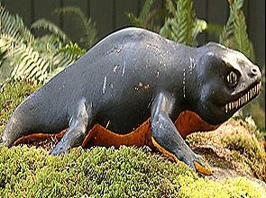 Seymauria-Lepidosaurus