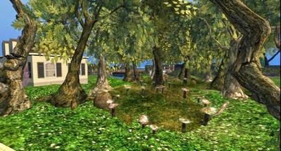 Maefayr Woods 001