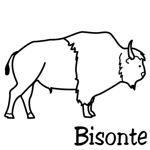 COLOREAR DIBUJOS DE BISONTES