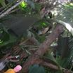 seychelles9_20070412_1680521329.jpg