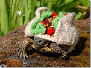 cosasdivertidas tortugas con ganchillo (3)
