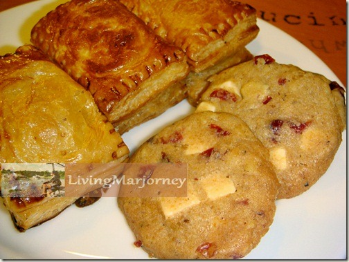 Chicken Alfredo Turnover and White Chocolate Cranberry Cookie