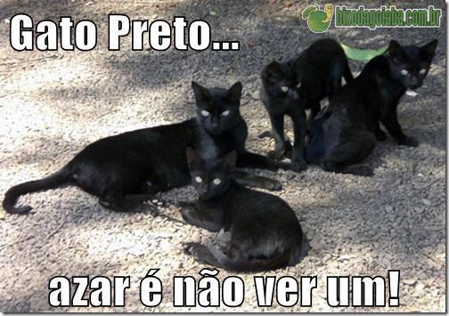 gato-preto-azar-e-nao-ver-um