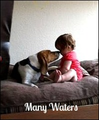 Many Waters Puppy Kisses