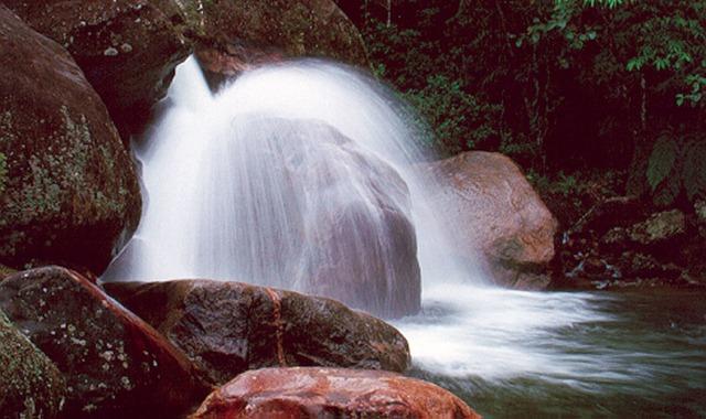http://www.ambiente.sp.gov.br/wp/trilhasdesaopaulo/2011/05/24/trilha-do-pocao-no-pesm-caraguatatuba/