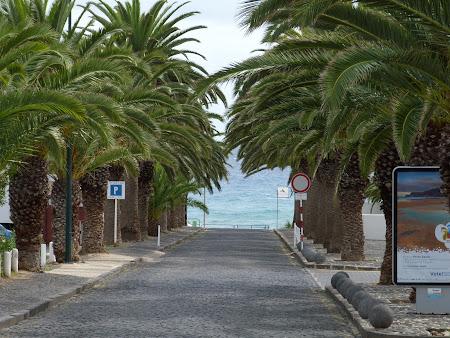 Palmieri si marea
