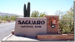 Saguaro National Monumanet
