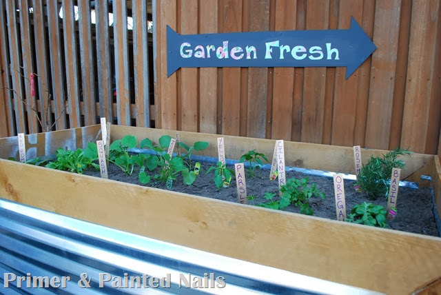 Planter & Garden Sign - Primer & Painted Nails