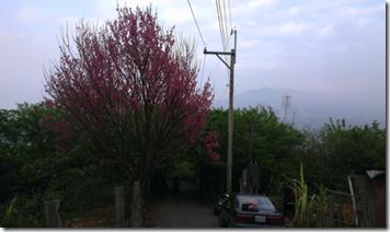 螢幕快照 2013-03-16 下午12.19.01