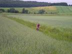 Oczywiście nie mogło zabraknąć drogi przez łąkę, która nagle i bez żadnego oznaczenia odbiła z szutrówki.