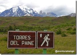 Torres Del Paine -  Placa
