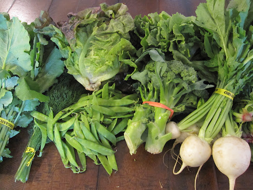 My full share for the week - Various greens, turnips, broccoli, peas, and dill