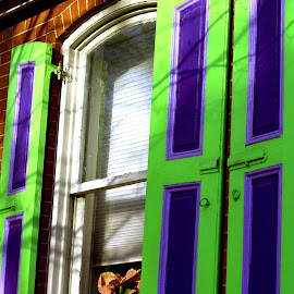 Lancaster Windows by Roxanne Dean - Buildings & Architecture Architectural Detail ( windows shutters street view brck house )