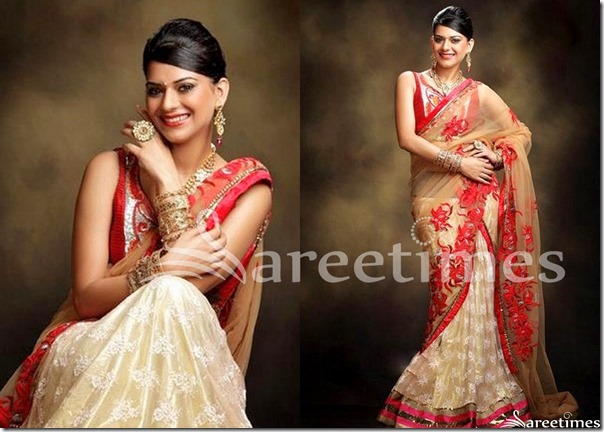 Poonam_Embroidery_Half_Saree