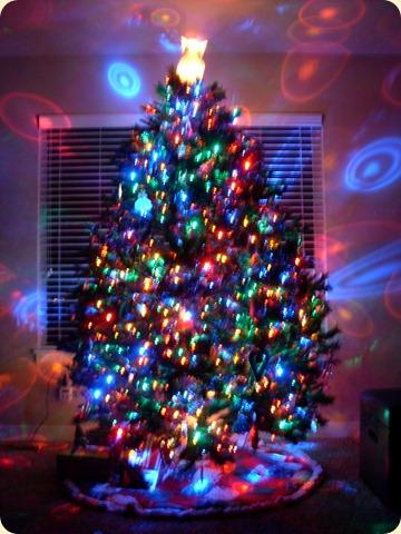 Christmas 2011 (4)