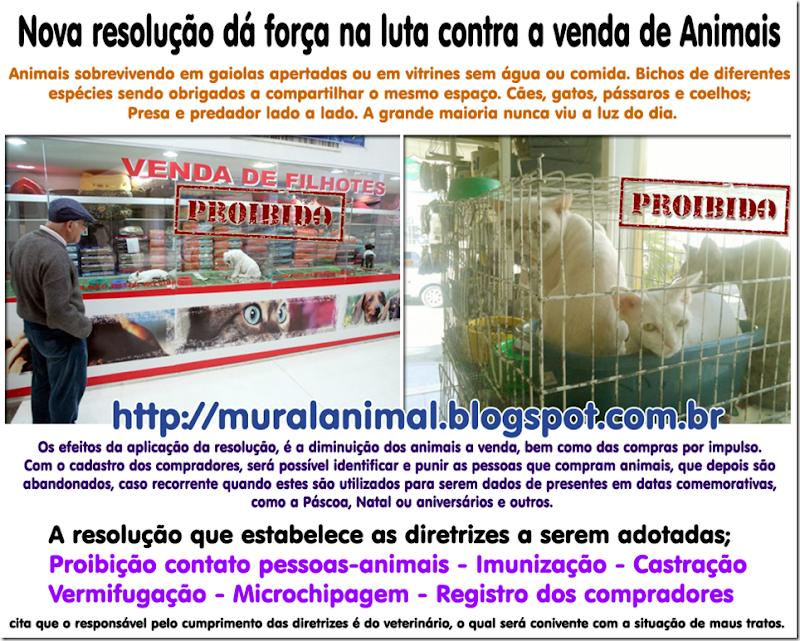 comercio_animais2