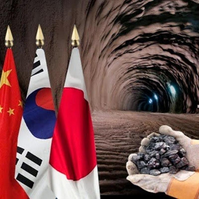 Rusos, chinos, japoneses y coreanos traen sus dólares atraídos por la enorme riqueza del suelo argentino.