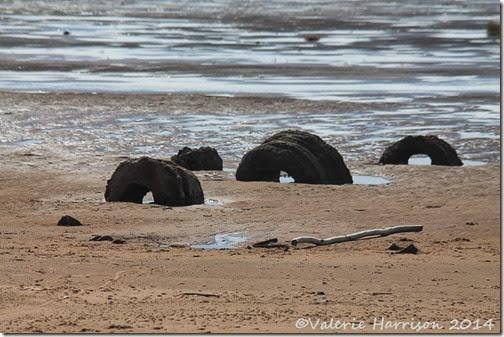 4-Mersehead-beach