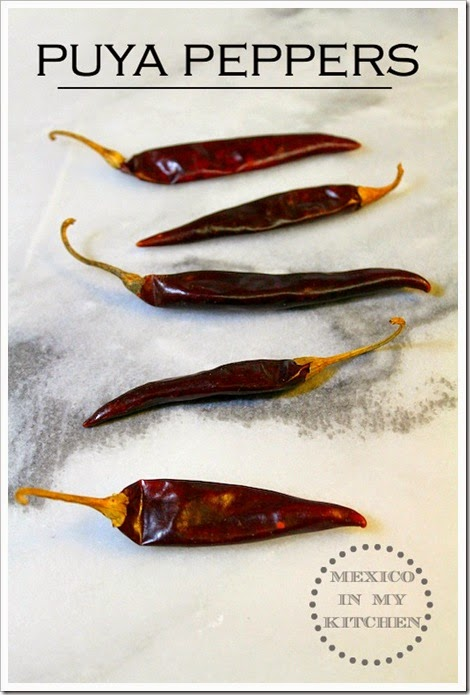 Super Spicy Salsa with Puya and Árbol Peppers | Mexican Puya Peppers