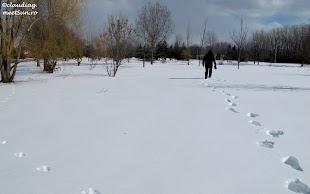 Montreal-Parc-Angrignon-13.jpg