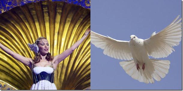 pop-stars-birds-19