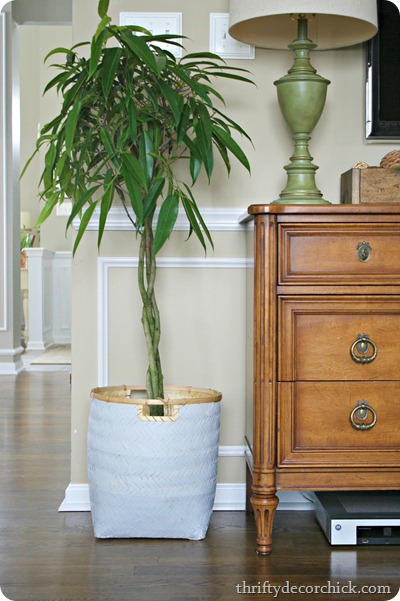 DIY ombre basket planter