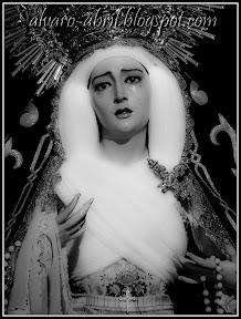 rosario-del-mar-almeria-inmaculada-2011-alvaro-abril-(8).jpg