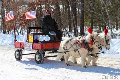Musical sleigh