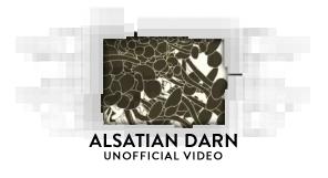 Alsatian Darn