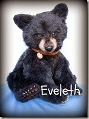 Eveleth tag